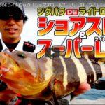 ハタ系狙いのハンタークラブ ジグパラスローとマイクロで根魚を釣る