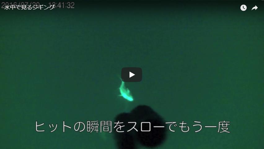 水中カメラを装着してジギングで釣れる様子を撮影
