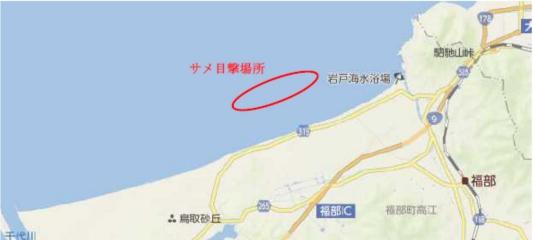 鳥取県沖に出たシュモクザメの目撃場所